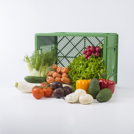 Hamborner Gemüsekiste groß