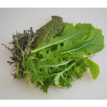 Asia Mix Salat, 200 g gepackt